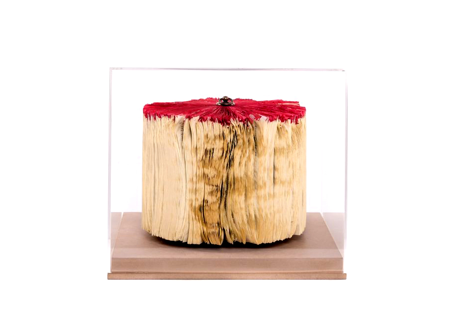 CRIZU_FOLDED_BOOKS_PAPER_SCULPTURE_DESIGN_HAND_MADE_ITALY_BLOWN_RED_BLACK_2